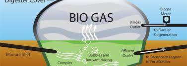 دانلود تحقیق بیوگاز، انرژی جانشین
